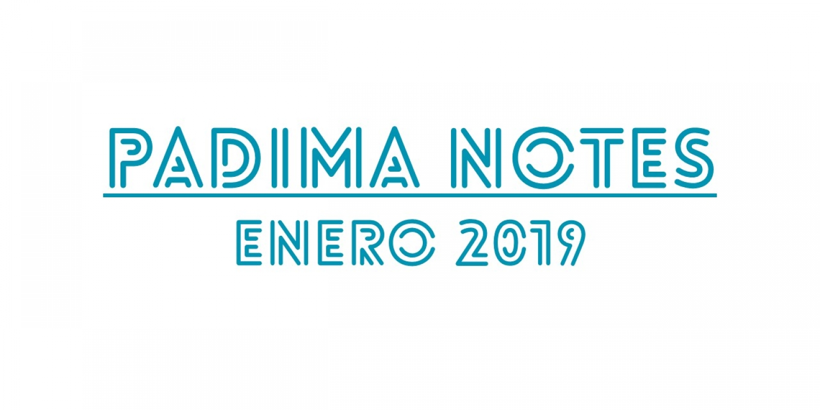Padima Notes enero 2019